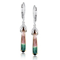 18K YELLOW & WHITE GOLD, WITH WHITE DIAMONDS. TE244 - COLOR EARRING